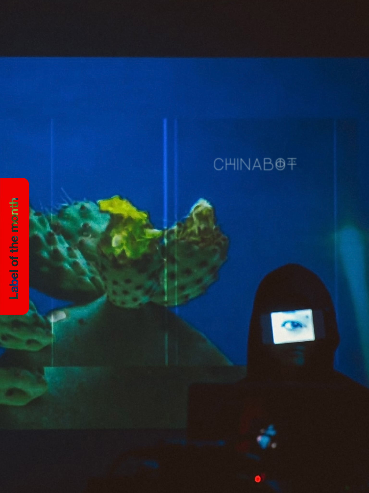 Label Of The Month: Chinabot